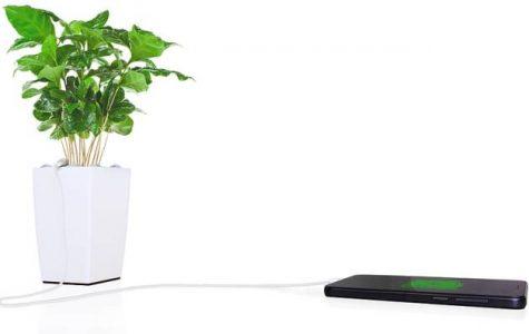Bio plant charger