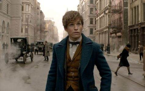 """Fantastic Beasts"" coming in theaters"