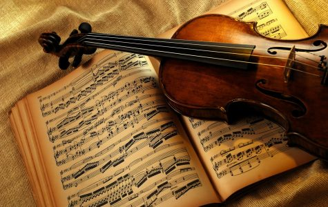 Concerto Night: Know the performers