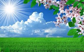 Spring back into sunshine