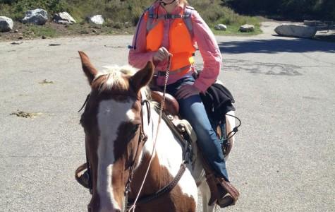 Amberlee Norton: husky on horseback