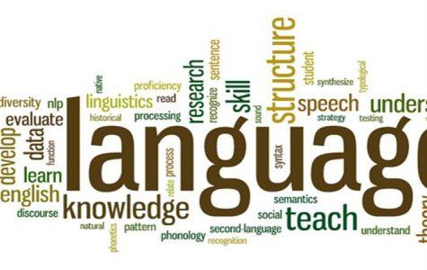 The culture of internet linguistics