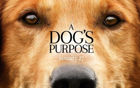 """A Dog's Purpose"": The unbreakable bond"