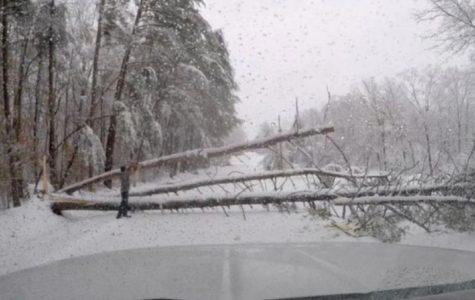 Snow storm nightmare