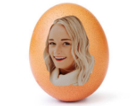 The Instagram egg