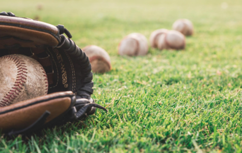 Husky baseball is ready to play some ball!