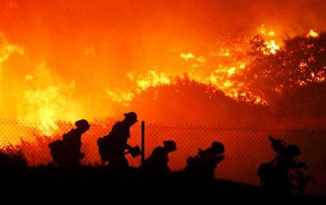 Wildfires devour California