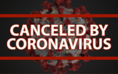 Coronavirus shuts down the sports world