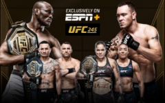 UFC: Let's get in the ring